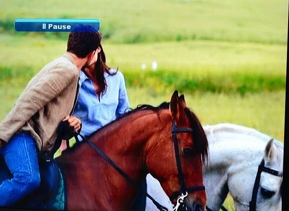 Till hästs