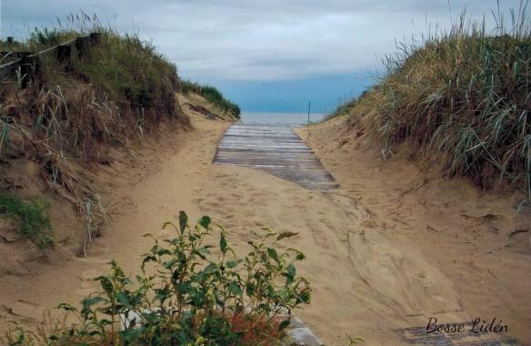 skrea strand